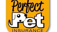 Perfect Pet Insurance